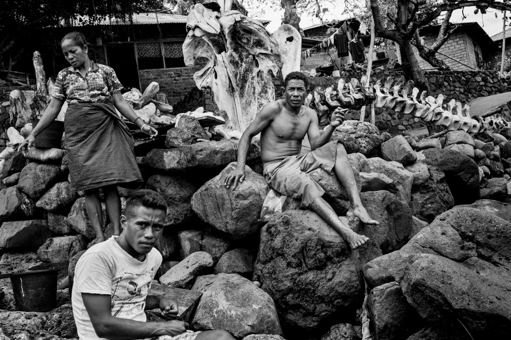 Lamalera: Traditional Whaling Village in Indonesia